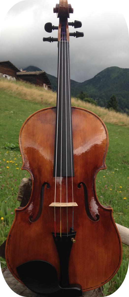 Gasparo da Salo Luca Olzer viola bresciana