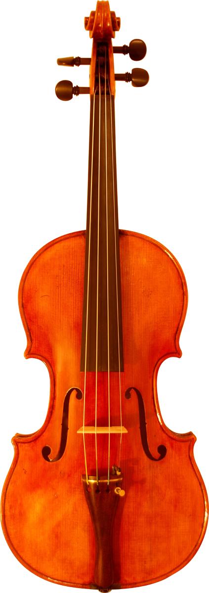 Stradivari abete val di fiemme